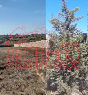 image de propriété - Terrain constructible à la campagne